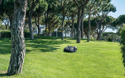 5 incroyables avantages de la tondeuse électrique autonome